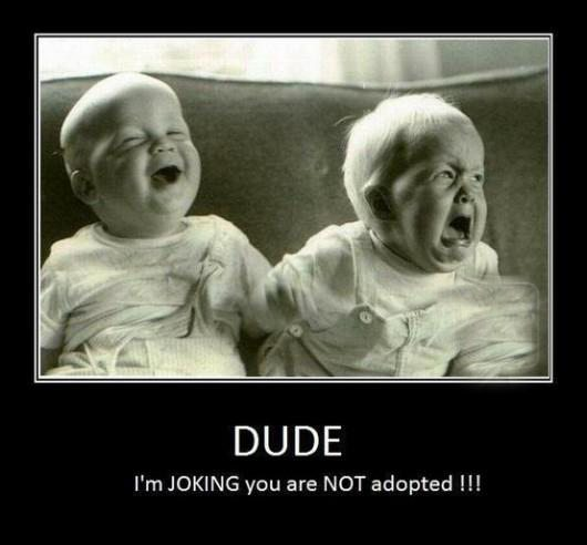 Funny Jokes |  13 #Funny #Jokes for your kids
