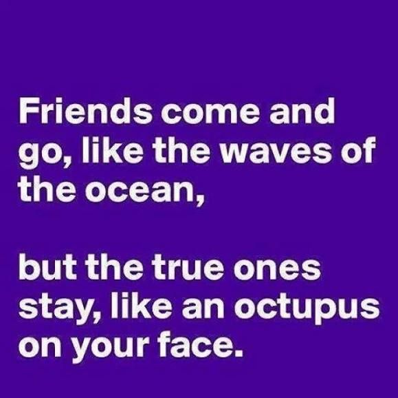 Best and Funny Friendship Quotes . Only for best friends Quotes and ...