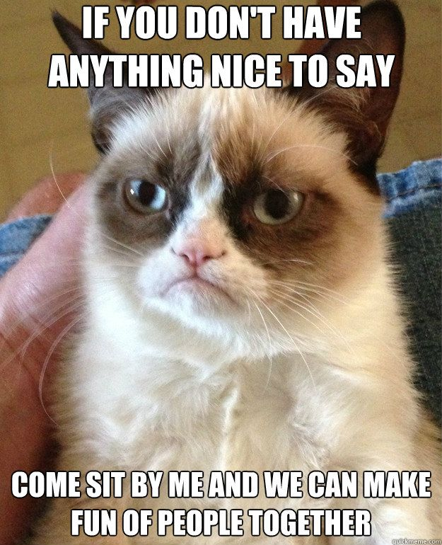 Funny cats quotes