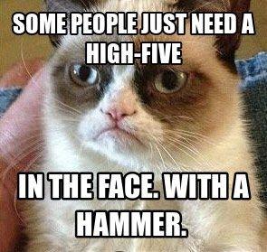 Grumpy cat funny .