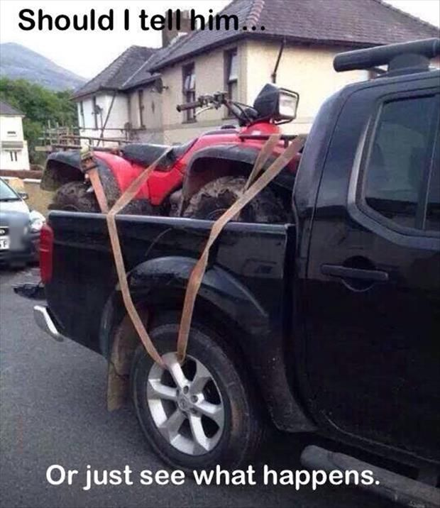 Top funny pictures lol