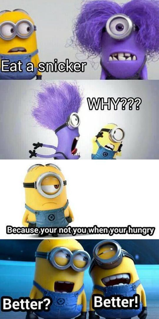 Top 30 Best Funny Minions Quotes and Pictures – Quotes and Humor