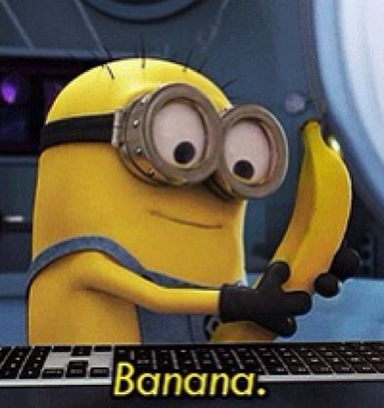 Top 30 Best Funny Minions Quotes and Memes #Minions