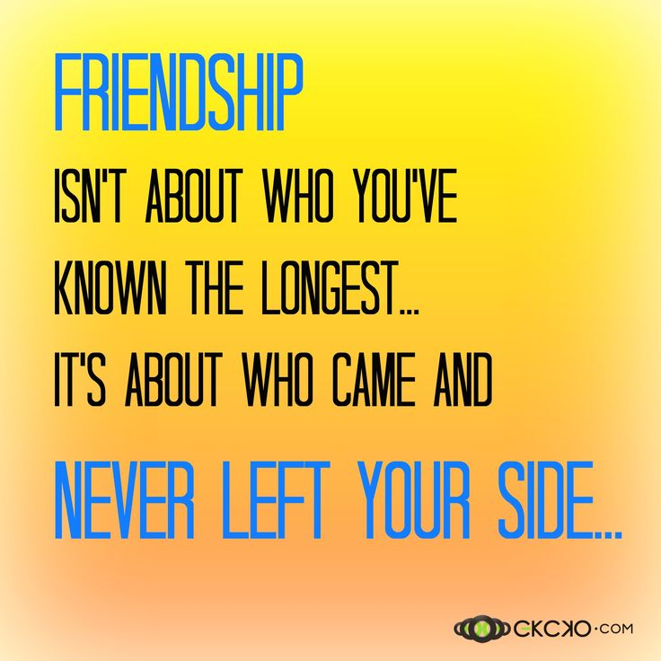 top 30 funny friendship sayings quotes of the month