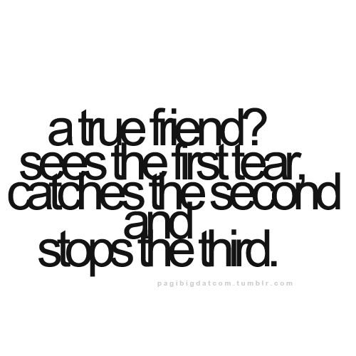 30 Cool Collection Of Love Quotes: Top 30 Funny Friendship Quotes Of The Month