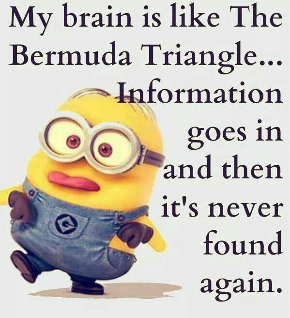 Top 40 Funniest Minions Quotes Sayings
