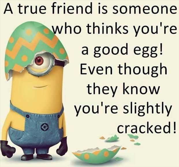 Best 30 Minions Best Friend Quotes #Humor #Funny