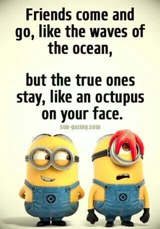 Best 30 Minions Best Friend Quotes