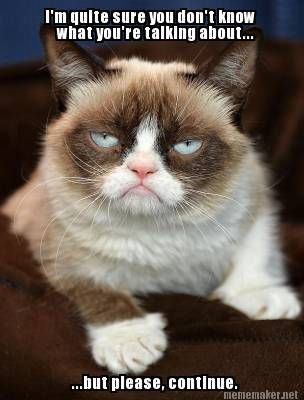 Top 40 Funny Grumpy cat Pictures #Pics