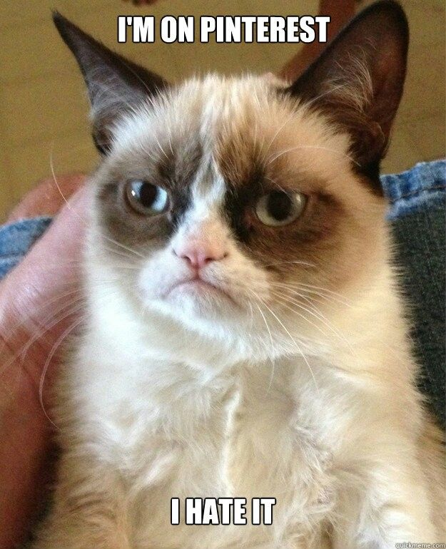 Top 40 Funny Grumpy cat Pictures #Quotes