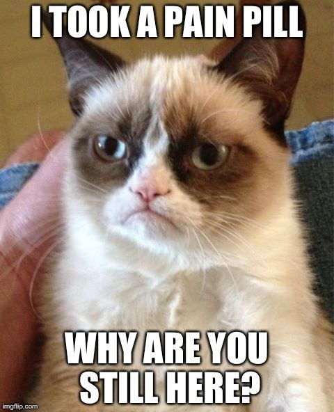 Top 40 Most Funny Grumpy Cat Images with captions #Funnies