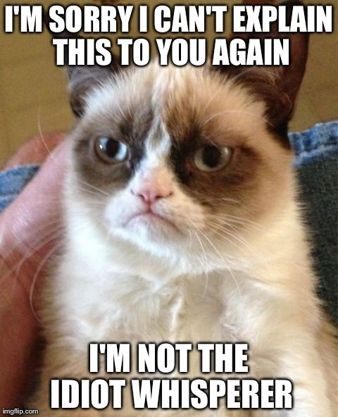 Top 40 Most Funny Grumpy Cat Images with captions #Quotes