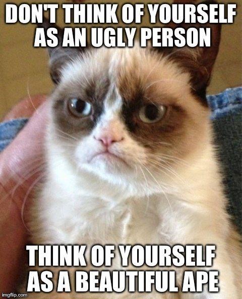 Top 40 most funniest grumpy cat pics #Frozen #Funny