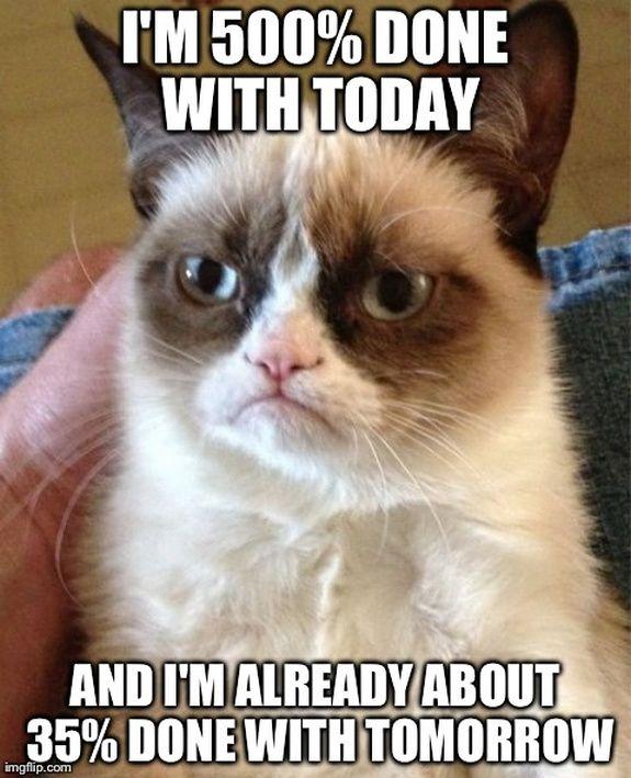 Top 40 most funniest grumpy cat pics #Funny #Humor