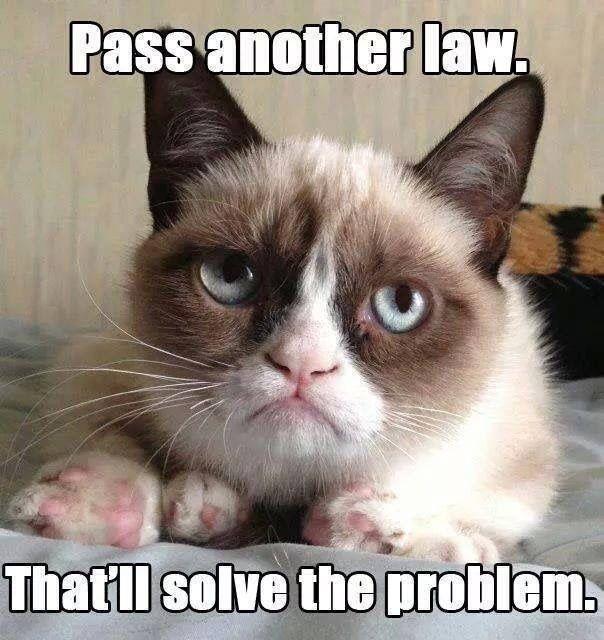 Top 40 most funniest grumpy cat pics #Funny