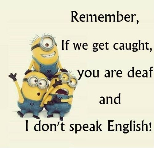 Top 39 Funniest Minions Pictures #Funny Quotes
