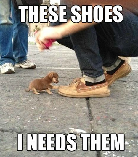 Top 25 Funny Memes #Funny images