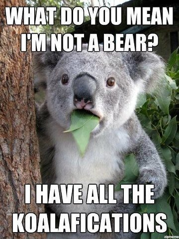 Top 25 Funny Memes #saying