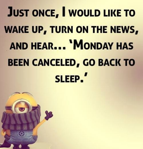Top 40 Funniest Minions Sayings #ROFL