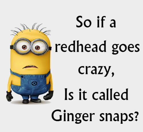 Top 40 Funniest Minions Sayings #lols