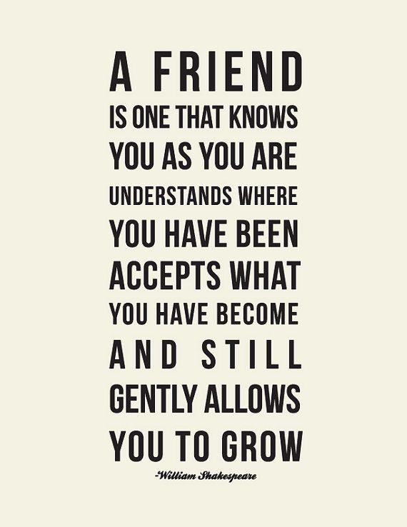 Top 50 Best Friendship Quotes Quotes And Humor