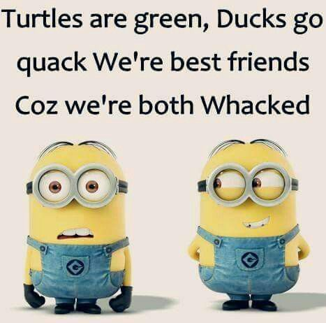 Top 50 Best Friendship Quotes #true friends quotes Minions