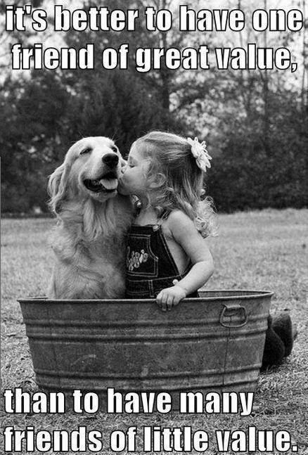 50 Best friendship pictures Quotes #besties quotes