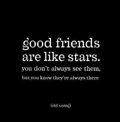 Photo Quotes About Friendship Alluring 50 Best Friendship Pictures Quotes  Quotes And Humor