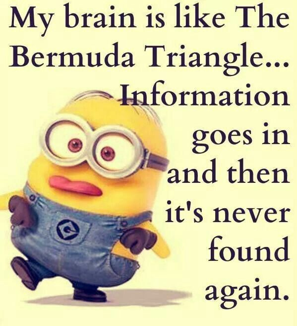 Minion Girl Quotes: Best 40 Minions Humor Quotes
