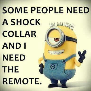 Best 40 Minions Humor Quotes #meme