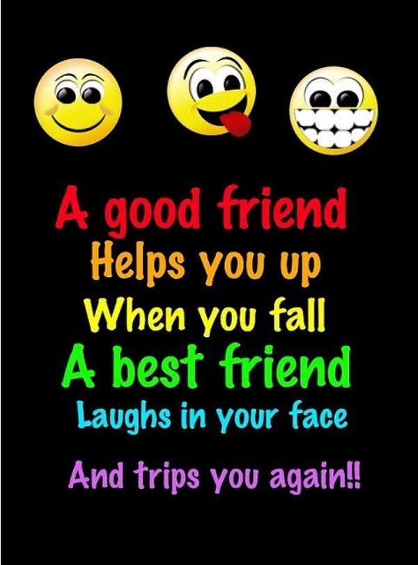Quotes About Good Friendship Amazing Best 45 Quotes Images Of Friendship  Quotes And Humor