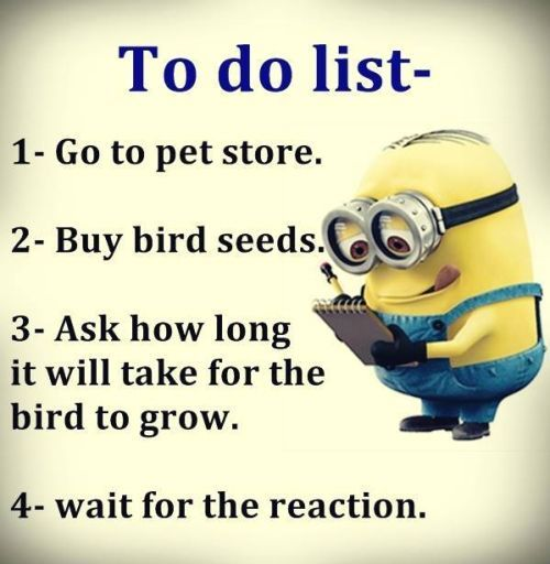 Funny Minion Jokes: Best 45 Very Funny Minions Quotes