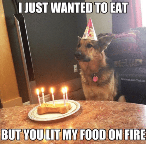 Top 20 Very Funny Birthday Quotes #best