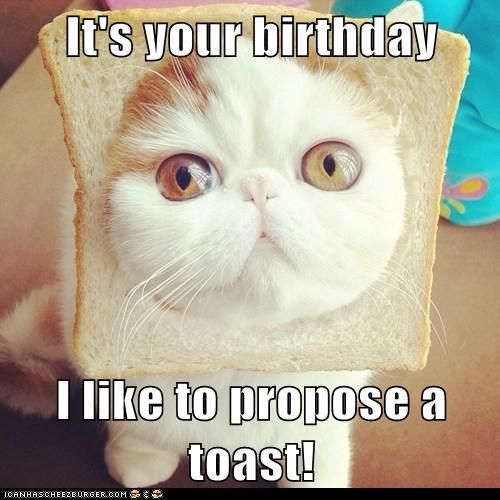 Top 20 Very Funny Birthday Quotes Quotation