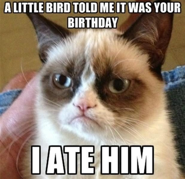 Top 20 Very Funny Birthday Quotes #quotes