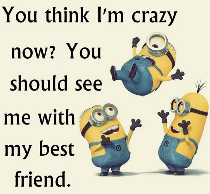 Top 40 Funniest Minions Memes #funny meme
