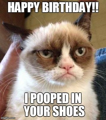 Top 25 Funny Birthday Quotes for Friends #humor