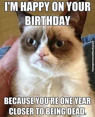 Top 25 Funny Birthday Quotes for Friends #wishes