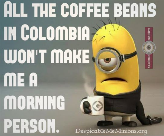 Good Morning Funny Quotes: Top 30 Funny Good Morning Quotes