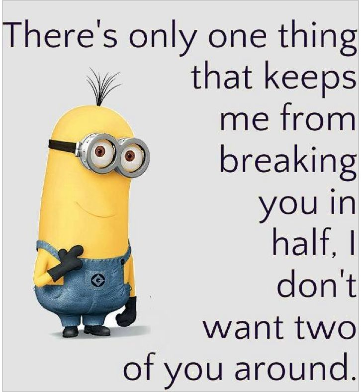 Top 40 Minion Jokes Quotes And Humor