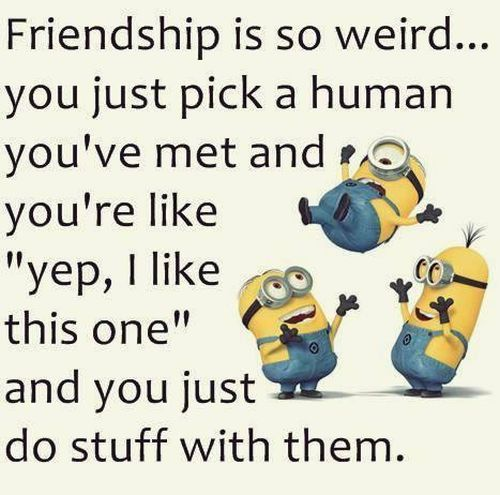 Top 30 Famous Minion Friendship Quotes | Quotes and Humor