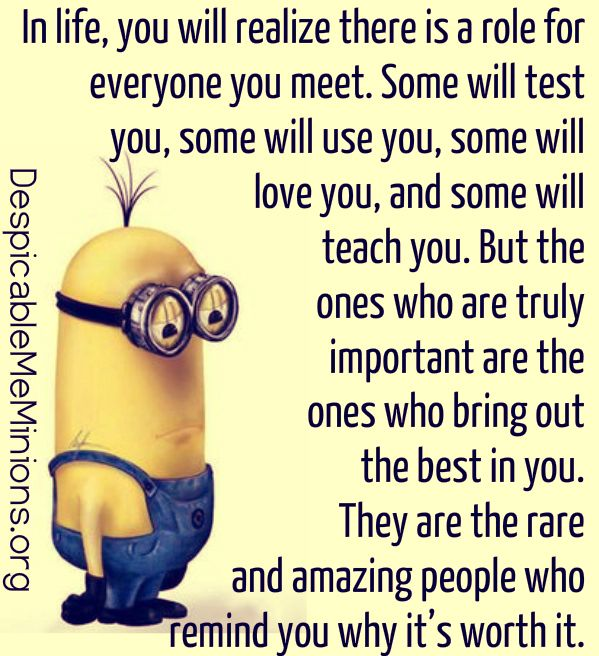 Funny Quotes About Love And Friendship Pleasing Top 30 Famous Minion Friendship Quotes  Quotes And Humor