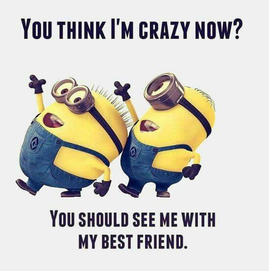 Top 30 Famous Minion Friendship Quotes #good quotes