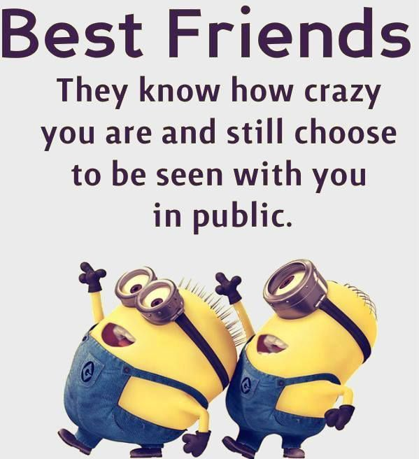 Best Friend Quotes: Top 30 Famous Minion Friendship Quotes