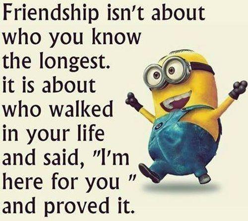 Top 30 Famous Minion Friendship Quotes #meme