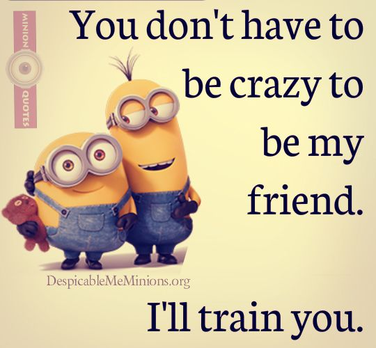 Famous Quote About Friendship Prepossessing Top 30 Famous Minion Friendship Quotes  Quotes And Humor