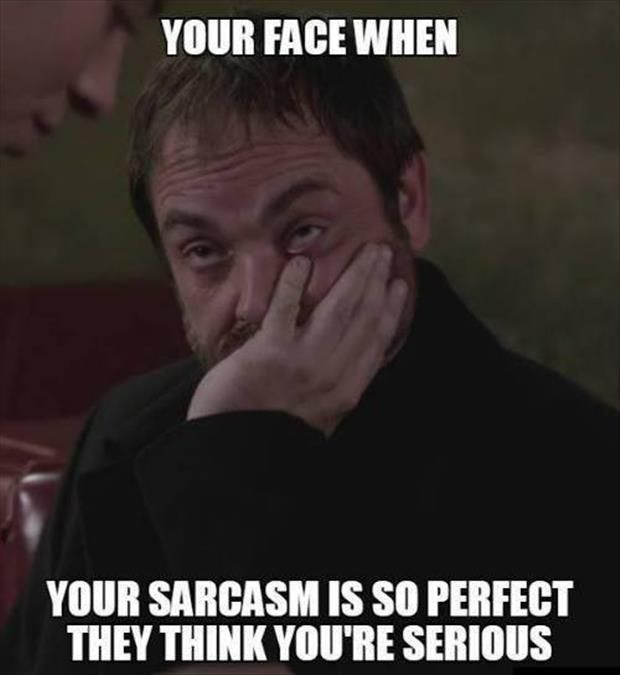 Top 30 Most Funniest Sarcasm Quotes Quotes And Humor