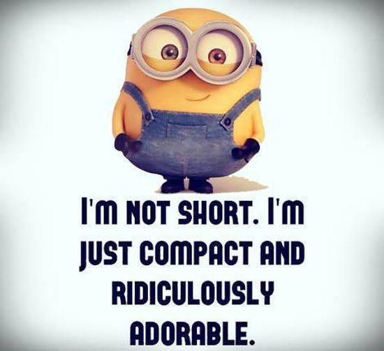 Top 30 Minions Humor Quotes #humor images
