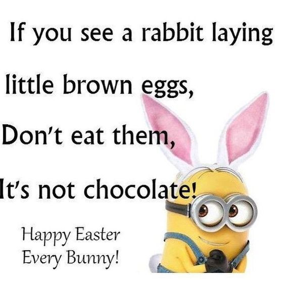 20 Funny Easter Quotes #Easter Quotes #Easter Sayings