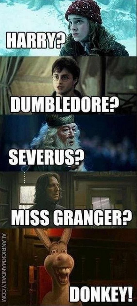 25 Funny Harry Potter Quotes | Quotes and Humor